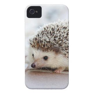 Hedgehog iPhone 4 Covers