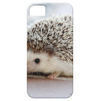 Hedgehog iPhone 5 Case