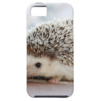Hedgehog iPhone 5 Cover