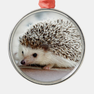 Hedgehog Metal Ornament