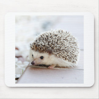 Hedgehog Mouse Pad
