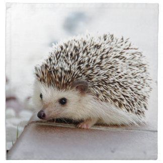 Hedgehog Napkin