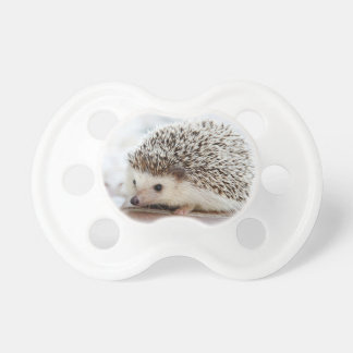 Hedgehog Pacifier