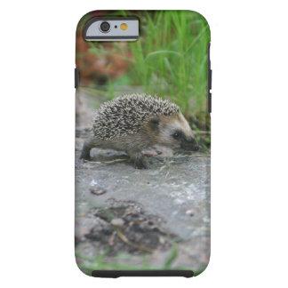 Hedgehog phone cases