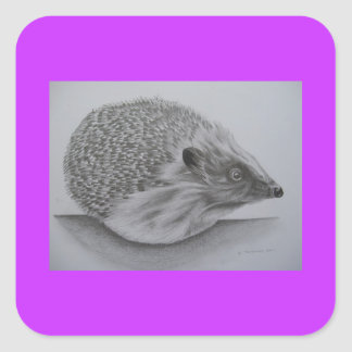 Hedgehog Products (2) Square Sticker