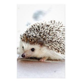 Hedgehog Stationery