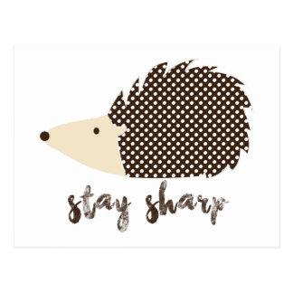 Hedgehog stay sharp postcard
