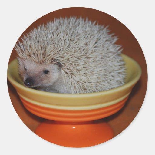 Hedgehog Sundae Round Stickers
