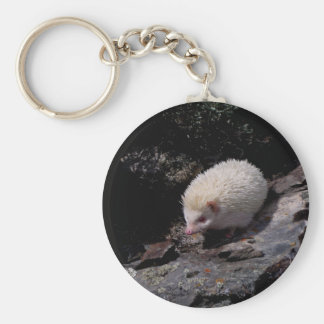 Hedgehog taking a stroll basic round button keychain