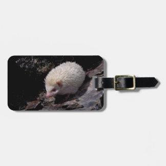 Hedgehog taking a stroll luggage tag