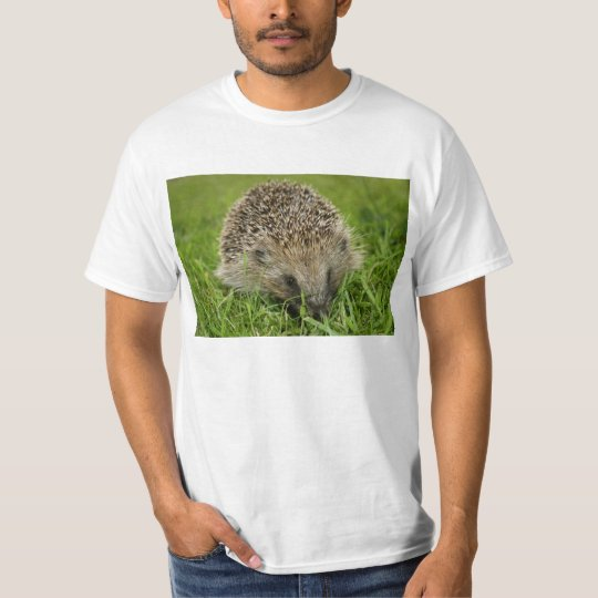 Hedgehog Teeshirt T-Shirt