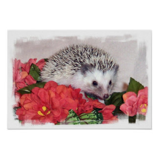 Hedgehog With Orange Flowers Poster