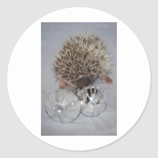 Hedgehog with Ornaments Sticker