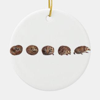 Hedgehogs in a line ceramic ornament