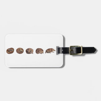 Hedgehogs in a line luggage tag