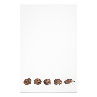 Hedgehogs in a line stationery