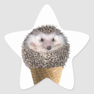 Hedgie Scoop Star Sticker