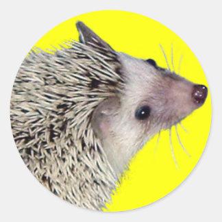 hedgielookup round sticker
