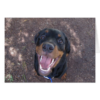 Heidi Happy Rottweiler Blank Greeting Card