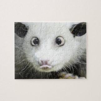 Heidi The Cross Eyed Opossum Puzzles