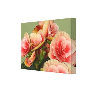 Heirloom Begonias 2 Canvas Print