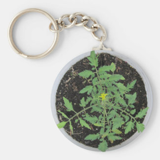 Heirloom Tomato Plant Peace Sign Keychain