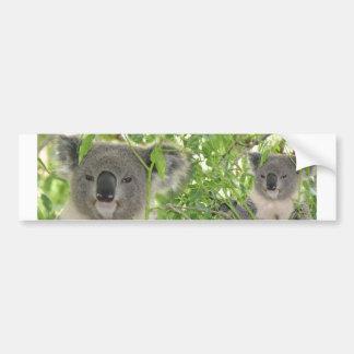 Helaine's Koala Bear Bumper Sticker