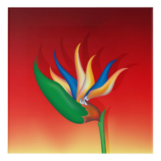 Heliconia Flower Acrylic Wall Art