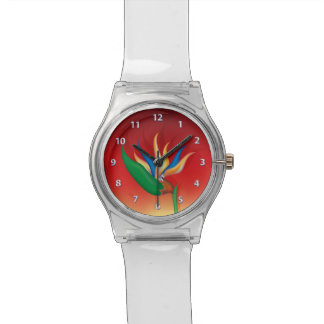 Heliconia Flower Watch