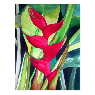 Heliconia Lobster Claw tropical watercolour flower Postcard
