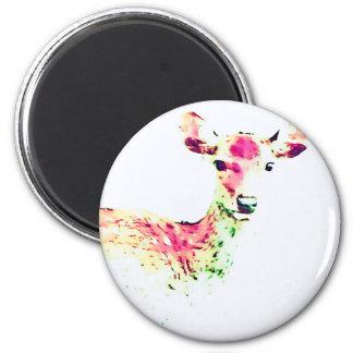 Hello:-) 2 Inch Round Magnet
