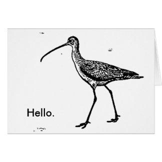 Hello Blank Sandpiper Notecard