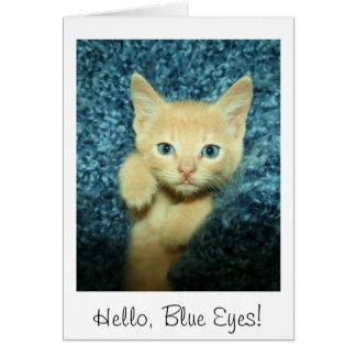 Hello, Blue Eyes! Buff Kitten Card