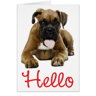 Hello Boxer Puppy Dog - Thinking of You, Love Card