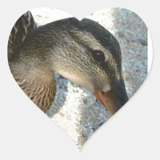 Hello Ducky Heart Sticker
