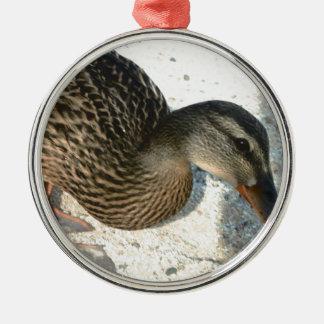 Hello Ducky Silver-Colored Round Ornament
