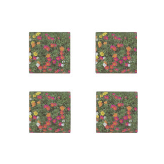 Hello Flowers Stone Magnets