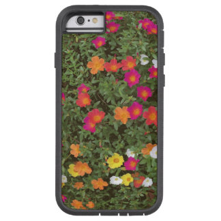 Hello Flowers Tough Xtreme iPhone 6 Case