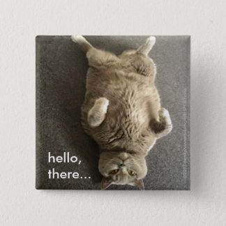 hello from Fiona the Big Blue Cat 2 Inch Square Button