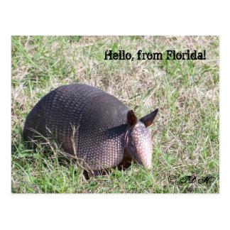 Hello, from Florida! Postcard