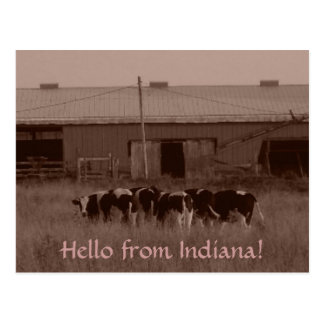 Hello from Indiana! Postcard