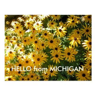 HELLO from MICHIGAN POST CARD POSTCARD