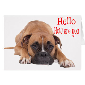 Hello / Hi Boxer Puppy - Brown & White Dog Card
