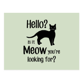 Hello is it meow you are looking for postcard