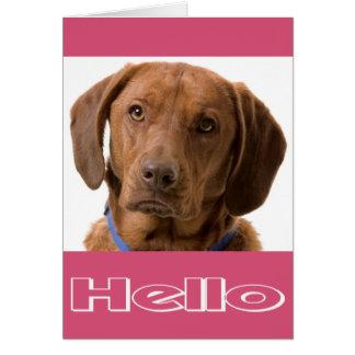 Hello Labrador Retriever Puppy Dog Note Card