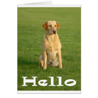 Hello Labrador Retriever Puppy Dogs Note Card