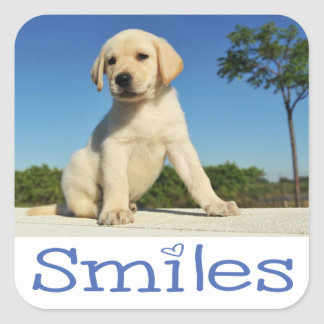 Hello Smiles Yellow Labrador Retriever Puppy Dog Square Sticker