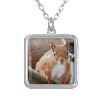 Hello Squirrel - Photography Jean Louis Glineur Silver Plated Necklace