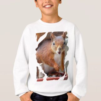 Hello Squirrel - Photography Jean Louis Glineur Sweatshirt