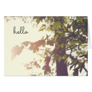 Hello Sun Lit Leaves on Tree Retro Inspired Card